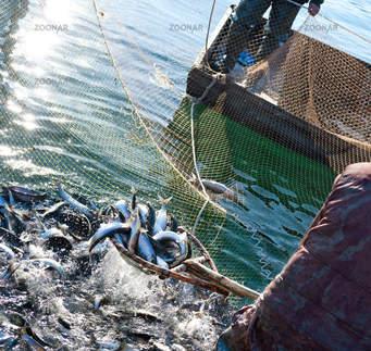 8 Days Fishing Safaris Uganda by Africa treasure Home